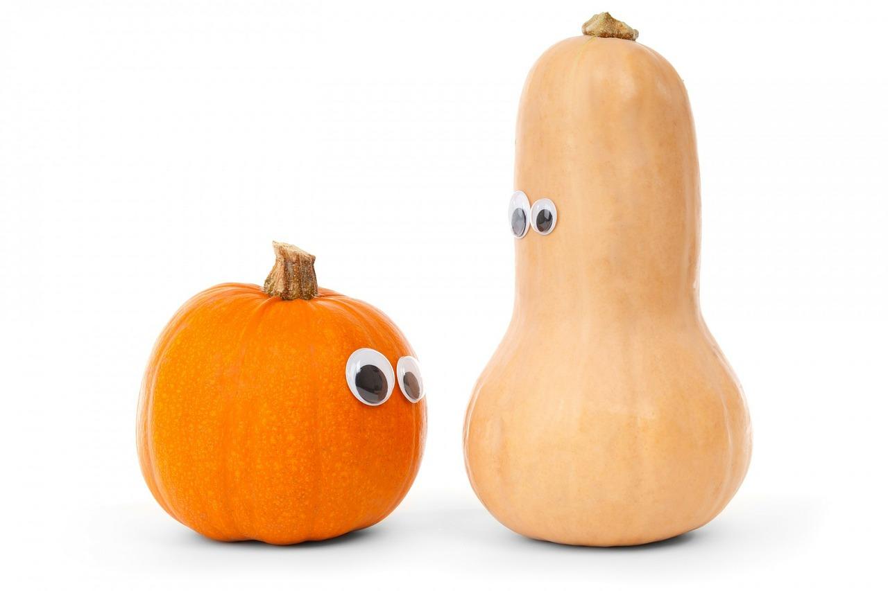 pumpkin-218238_1280